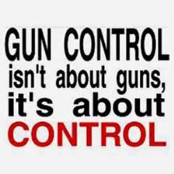 Pro gun argument essay
